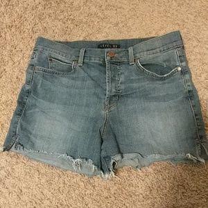 Level 99 cutoff denim shorts